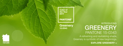 pantone-unveils-colour-year-2017-pantone-15-0343-greenery-1